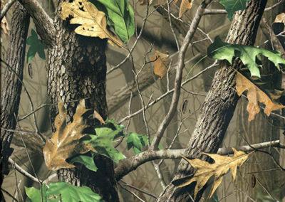 Hardwoods-Green