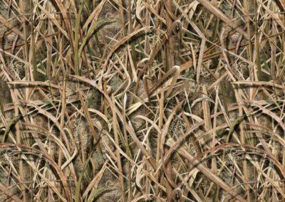 shadow-grass-blades-hotspots